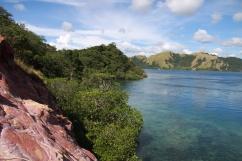 """prehistoric"" komodo landscape/seascape"