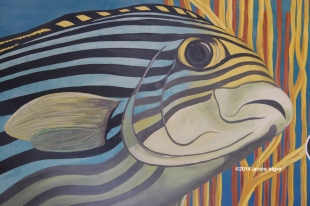 fish painting 9873 copyright