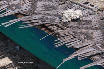 panagsama beach 2 9886 copyright
