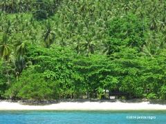 beach GB 3725 copyright