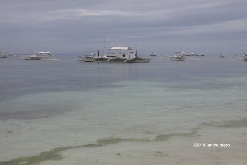 panglao beach copyright 0003