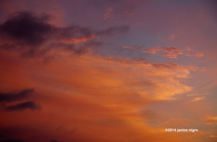 9383 LA sunset copyright