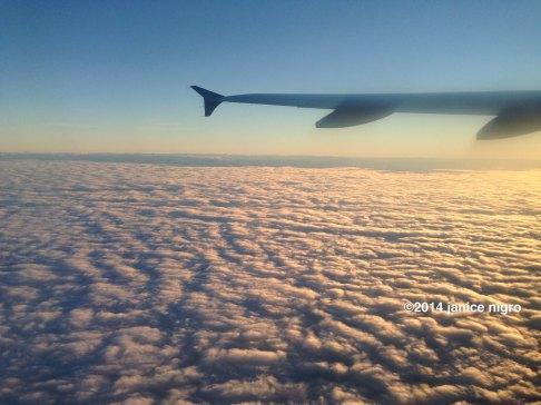 flight IMG_2369 copyright