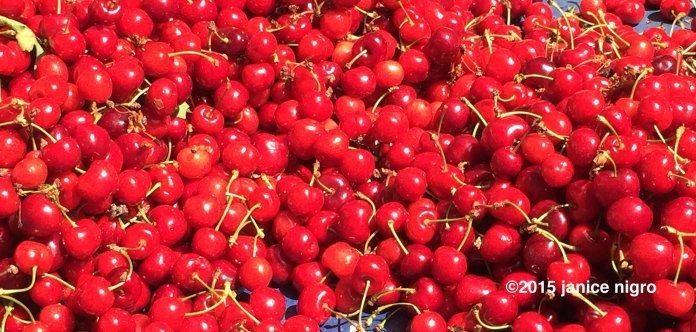 cherries 1304 copyright