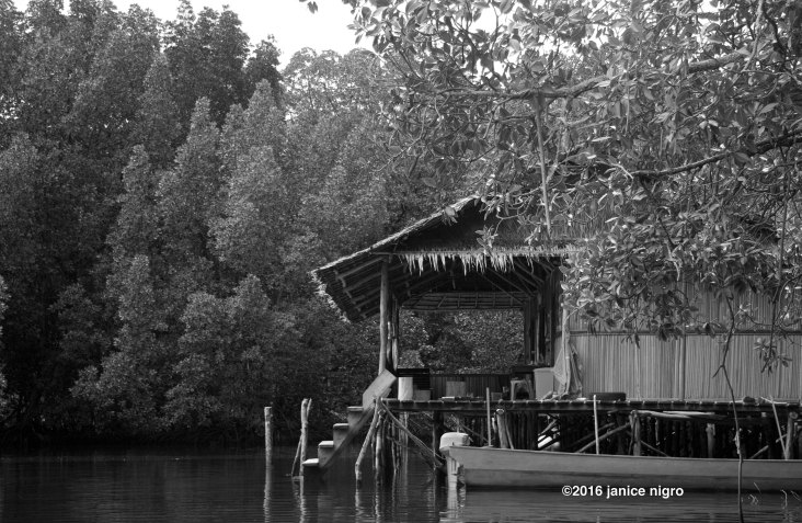 house raja ampat BW 7714 copyright