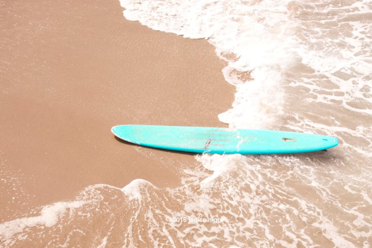 surfboard 2411 copyright