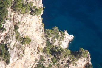 capri-sea-6576-copyright