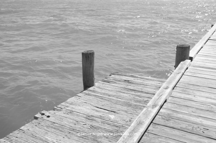 pier florida BW 0116 copyright